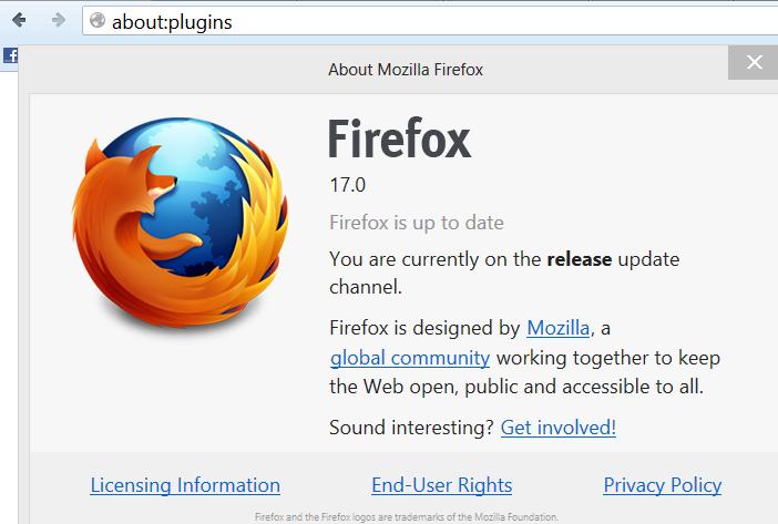 Mozilla Firefox 17